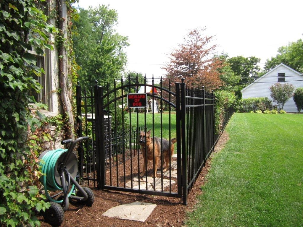 5x4 Aluminum Arched Walk  Gate Keeping the Dog Safely in HIs Yard