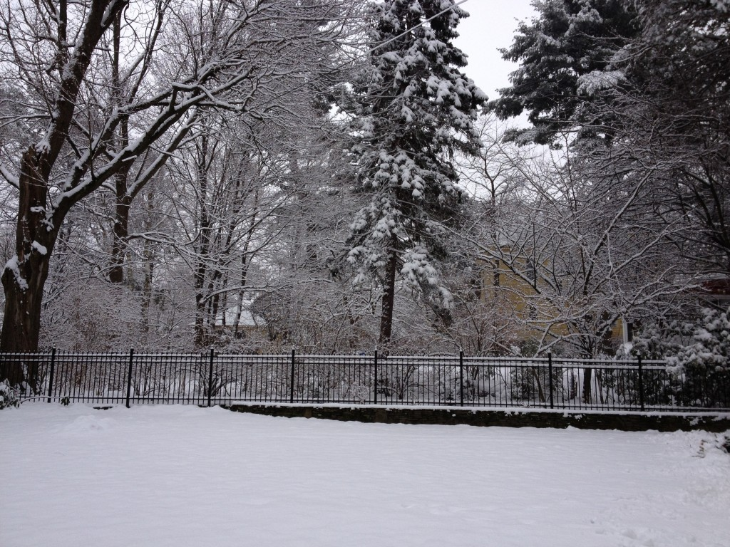 4ft Aluminum Fence with Snow