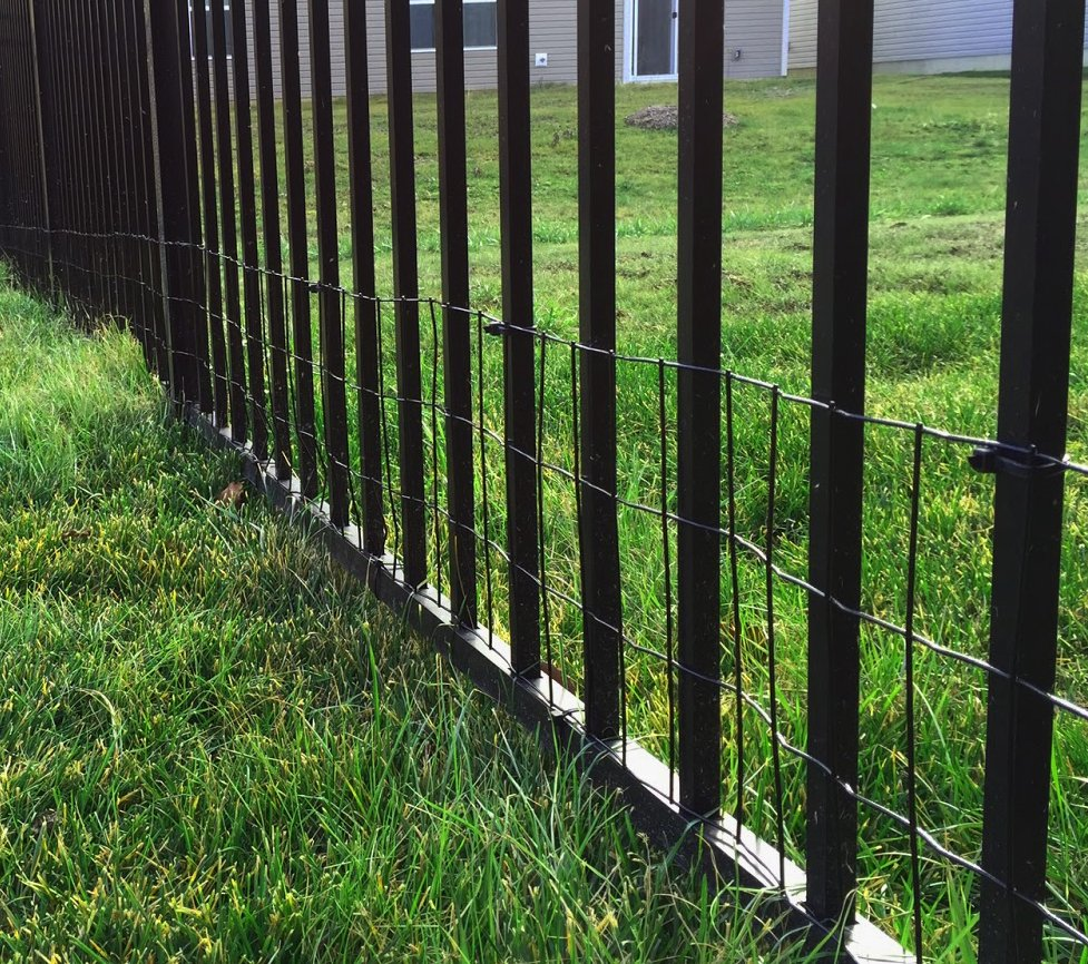 Welded Wire Fence Accents Iron and Aluminum Fence and Will Keep Your Small Dog Contained