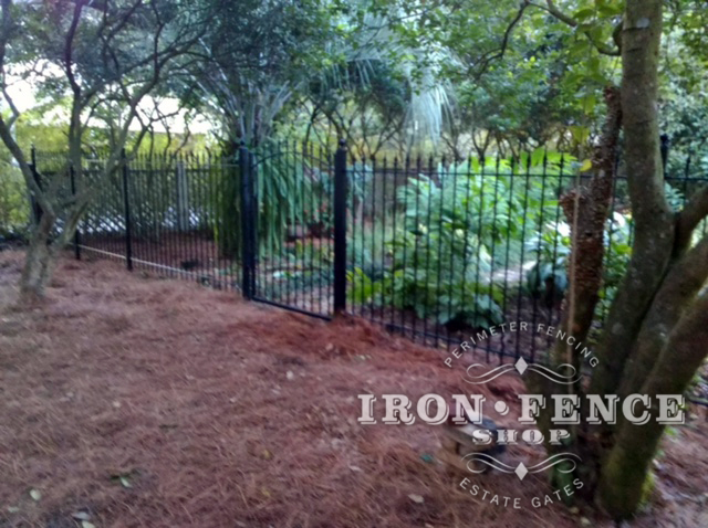 5ft Tall Classic Iron Fence and Arched Gate in Traditional Grade
