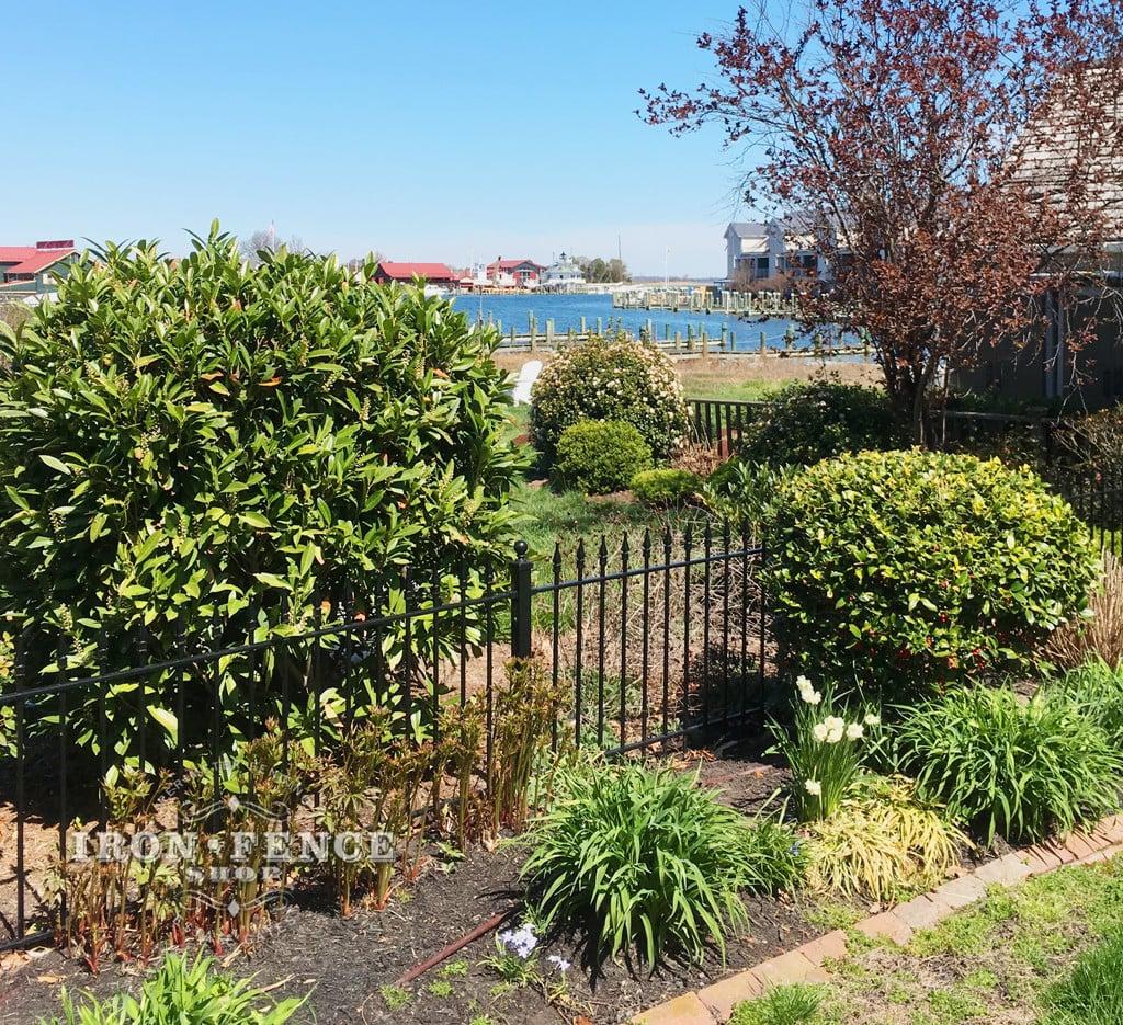 3ft Wrought Iron Fence Threading Through a Beautiful Garden Setting
